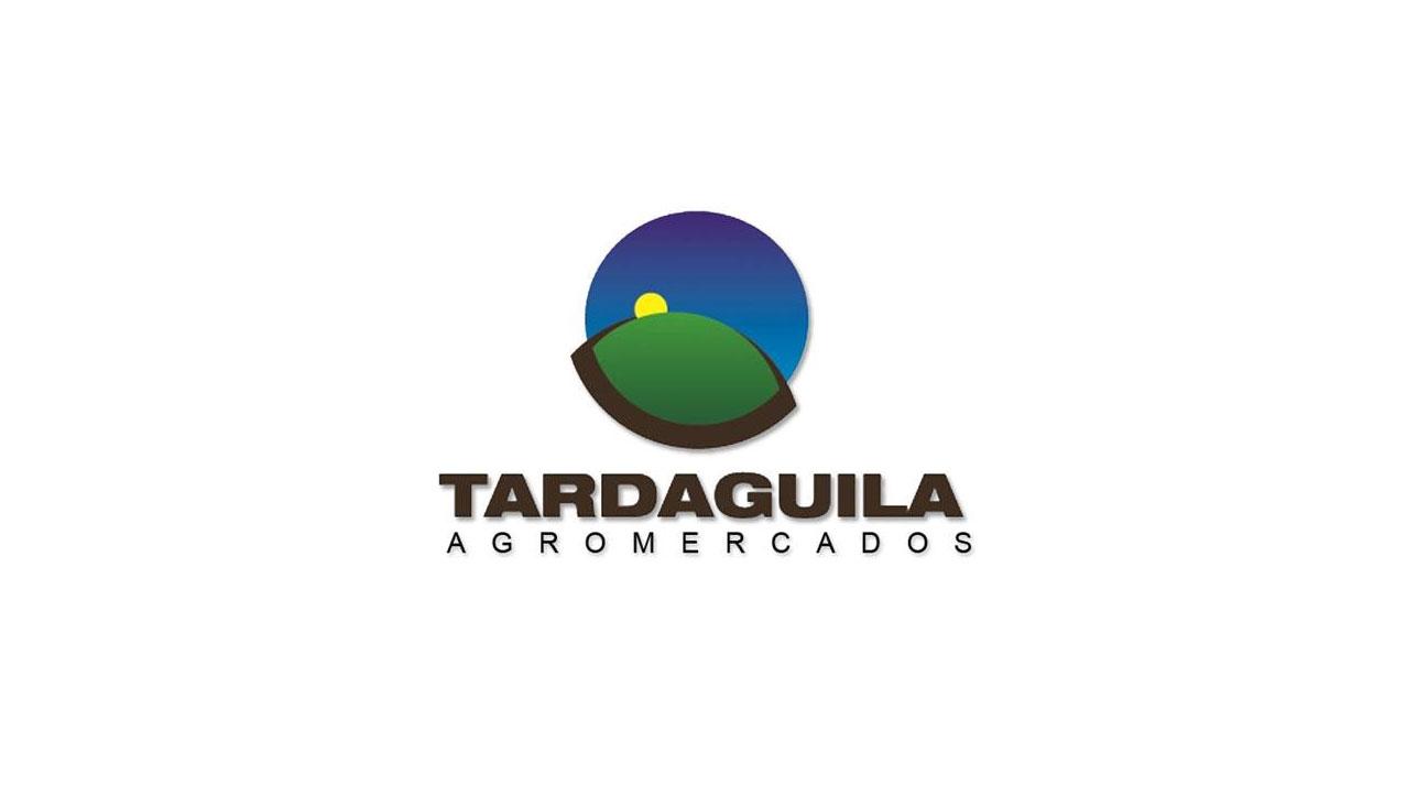 """El sector forestal uruguayo """"Ya es referencia y podemos llegar más lejos"""""""
